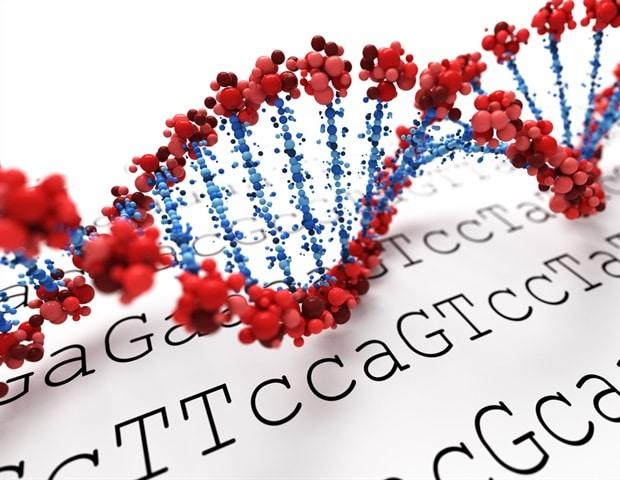 Резултатът от генетичния риск може да се използва за определяне на риска от развитие на рак на простатата | ✅ Д-р Стоян Арнаудов - Ортопед | Травматолог ⭐️