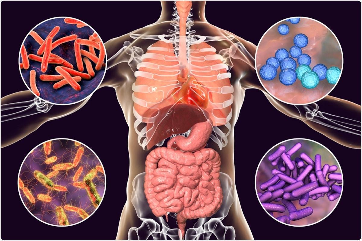 Проучване: Чревните и оралните микробиоми са силни предиктори за тежестта на covid-19, основният предиктор за фатална смъртност, свързана с covid-19. Кредит за изображение: Катерина Кон / Shutterstock