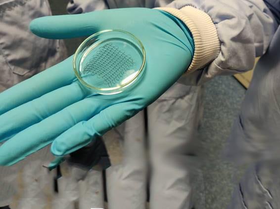 Изкуствени лепенки за тъкани при лечение на увредени сърца   ✅ Д-р Стоян Арнаудов - Ортопед   Травматолог ⭐️